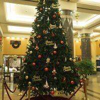 12月なのでクリスマスツリーが出ていました