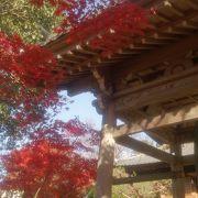 犬山の紅葉名所