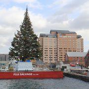シンボルは大きなクリスマスツリー
