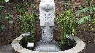 無料で園内を楽しめる『青島亜熱帯植物園』