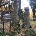 写真:日比谷公園 京橋の欄干柱