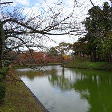 見どころ多い城址公園 (鶴岡公園・鶴ヶ岡城跡)
