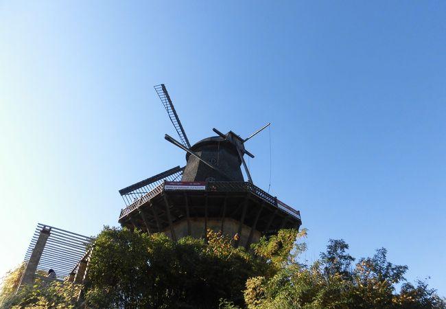 守られた風車