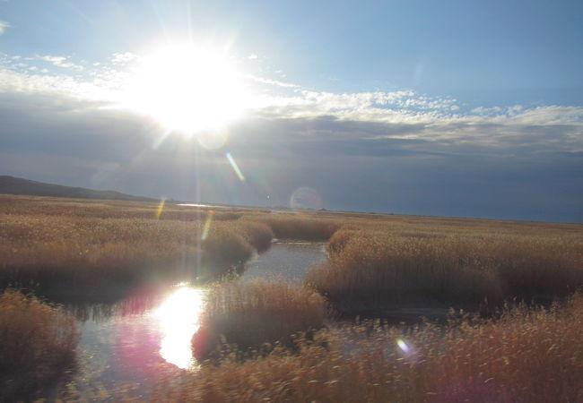 パシクル沼