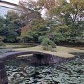 写真:小石川後楽園 内庭