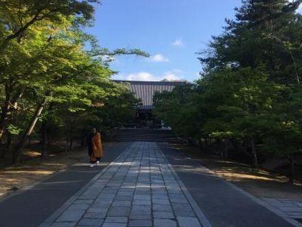 仁和寺 御室会館 写真