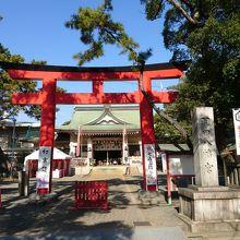 豊橋「三大祭」の一つと言われる「羽田祭」は手筒花火が奉納される