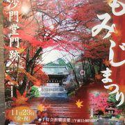 古都の風景    12月の散り紅葉