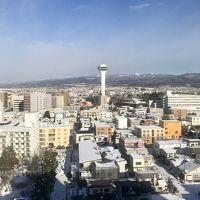 部屋からの景色です。五稜郭タワーがよく見えます。