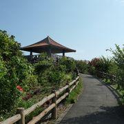 ハイビスカスが咲く展望台、玉取崎展望台