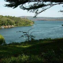 ヴィクトリア湖-2