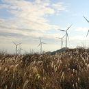 東伊豆町風力発電所 (風車見学)