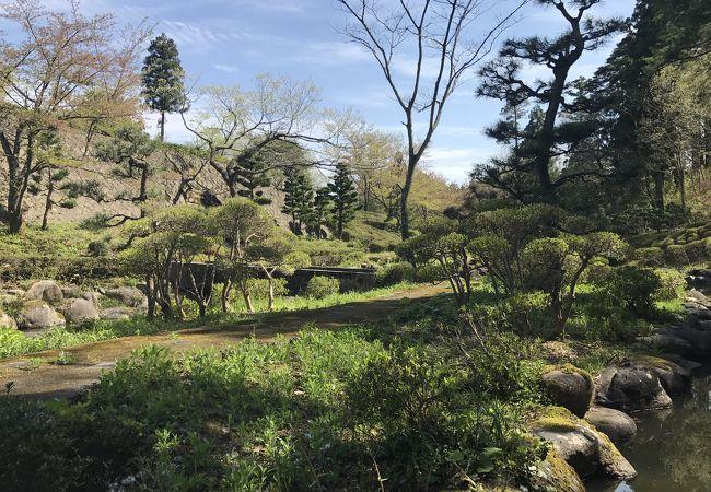 朝日山古墳群と古墳公園
