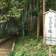 雰囲気のある竹の坂