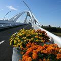 写真:豊田大橋