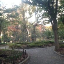 都会の真ん中の緑豊かな公園