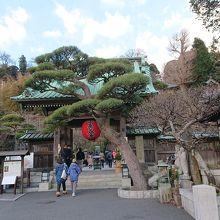 長谷寺の入口です。