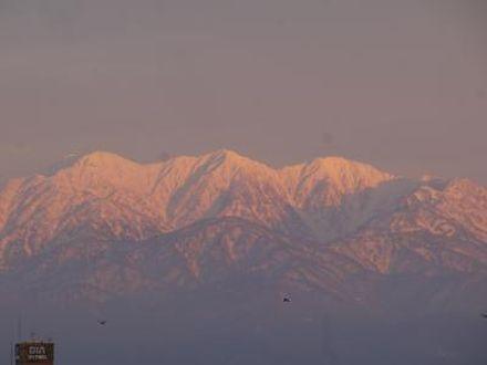 ダイワロイネットホテル富山 写真