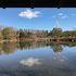 真ん中に池がある回遊式の日本庭園