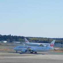 いろいろな飛行機を見ることができます
