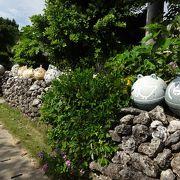 勢いのある植物が印象的な島