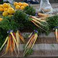 写真:鎌倉中央食品市場