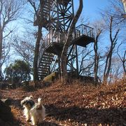 犬も登った仏果山(標高747m)