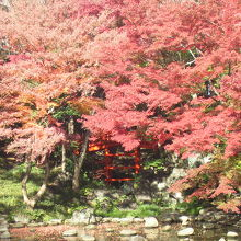京都の東福寺の通天橋に準えられています。