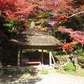 写真:小石川後楽園 丸屋