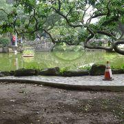 国立博物館の前の池です。