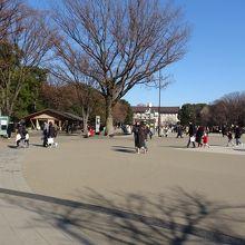 上にある広場には大勢の観光客が仏閣を見て回ってます。