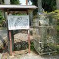 写真:石松の墓