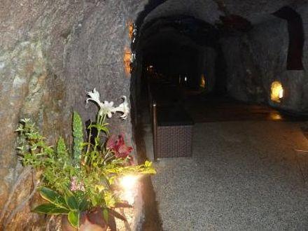 洞窟風呂の宿 百楽荘 写真