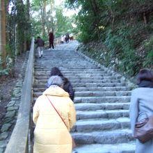 多賀宮へ上る石段