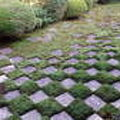 東福寺の庭園