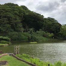 大きな池を中心に歩くことができる。