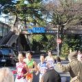 写真:旧東海道松並木