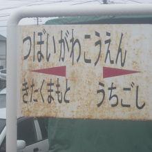 坪井川公園駅