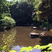 池泉回遊庭園がある。
