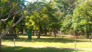 ヴィハーラ マハー デーウィ公園