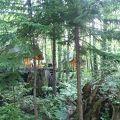 森の中のオリジナルショップ