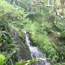 席からは、勢いよく流れ落ちる滝を眺められます。