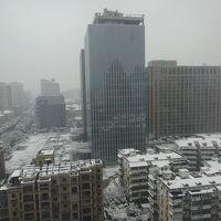 朝起きたら雪景色でした。