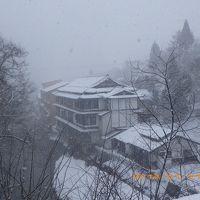 雪の降り方きれいだった