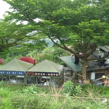 猫空の風景 茶芸館