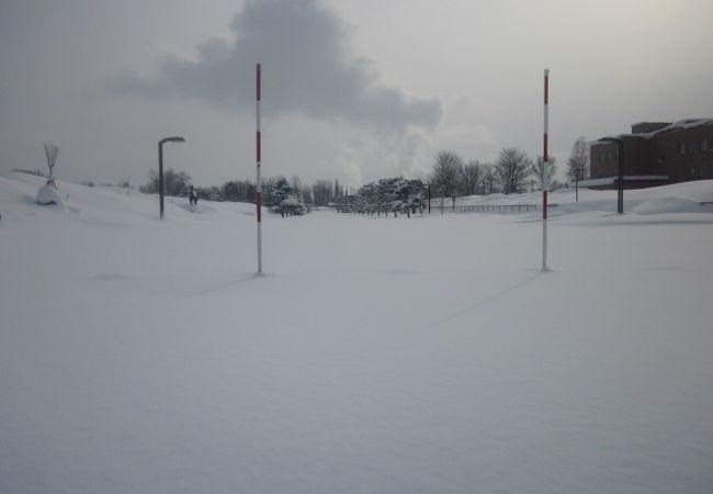 花咲スポーツ公園