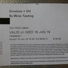 ワインテースティング付きのゴンドラ往復チケット