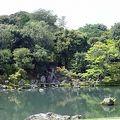写真:天龍寺 曹源池庭園