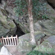 徳島城跡公園内