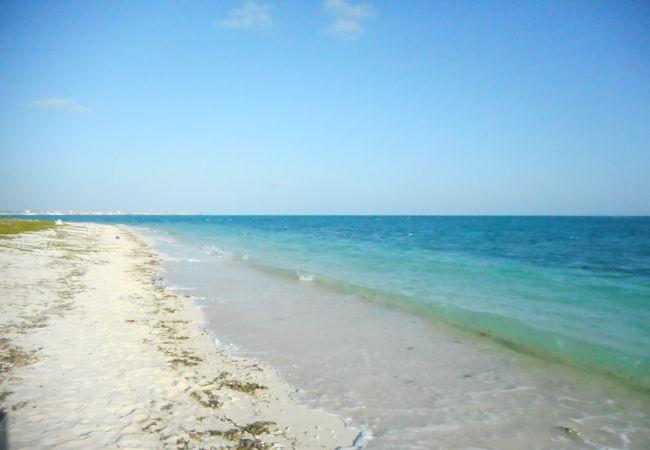 静かな海岸でした。